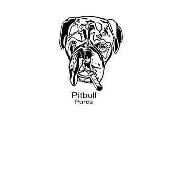 PITBULL MUCHACHA